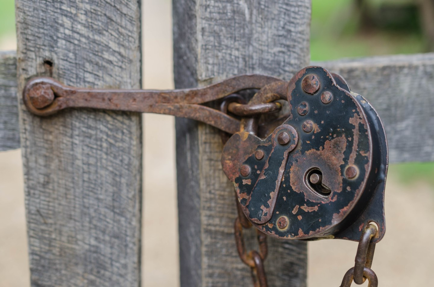 An old lock guards a gate