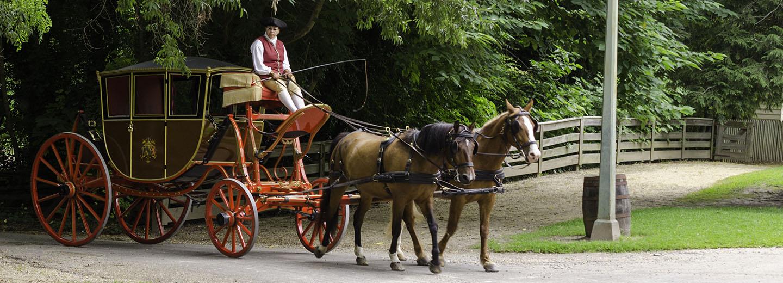 Decorative horse-drawn carriage