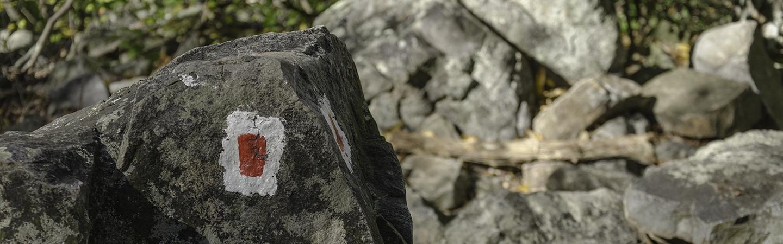 A trail marker near the Delaware Water Gap