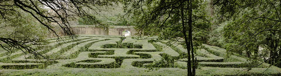 Hedge maze behind Governor's Palace in Williamsburg