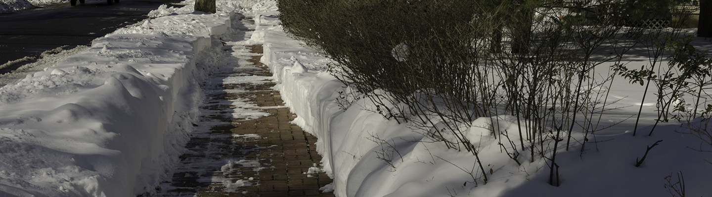 A brick sidewalk, cleared of snow.