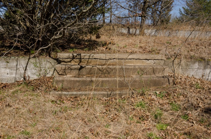 A short set of old, worn, steps