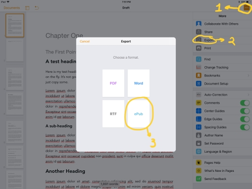 iOS Pages Export Dialog