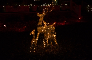 A family of deer, made up of Christmas lights.