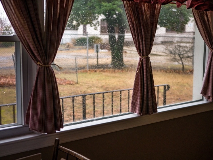 A rainy day, as seen though a bay window.