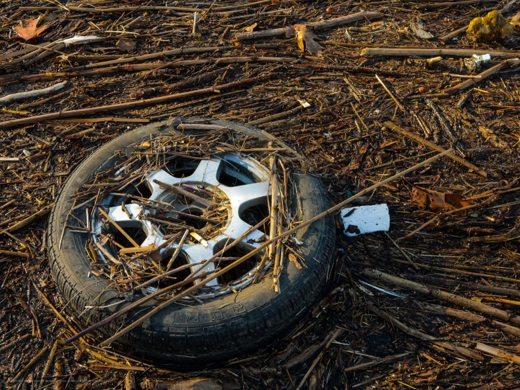 A tire, floating in river debris.