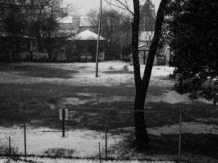 Swirling Snow