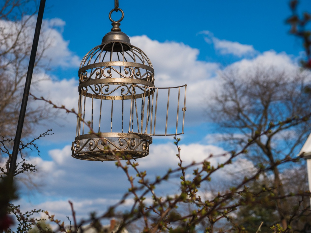 Decorative Birdcage against a blue sky.