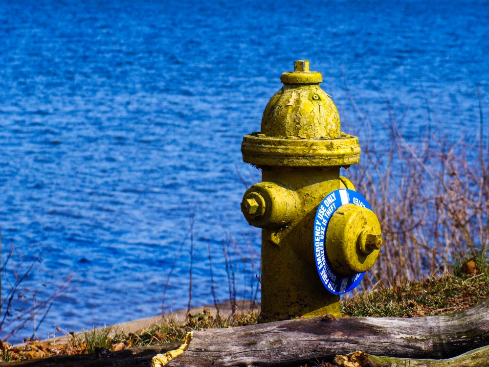 A fire hydrant by the river.