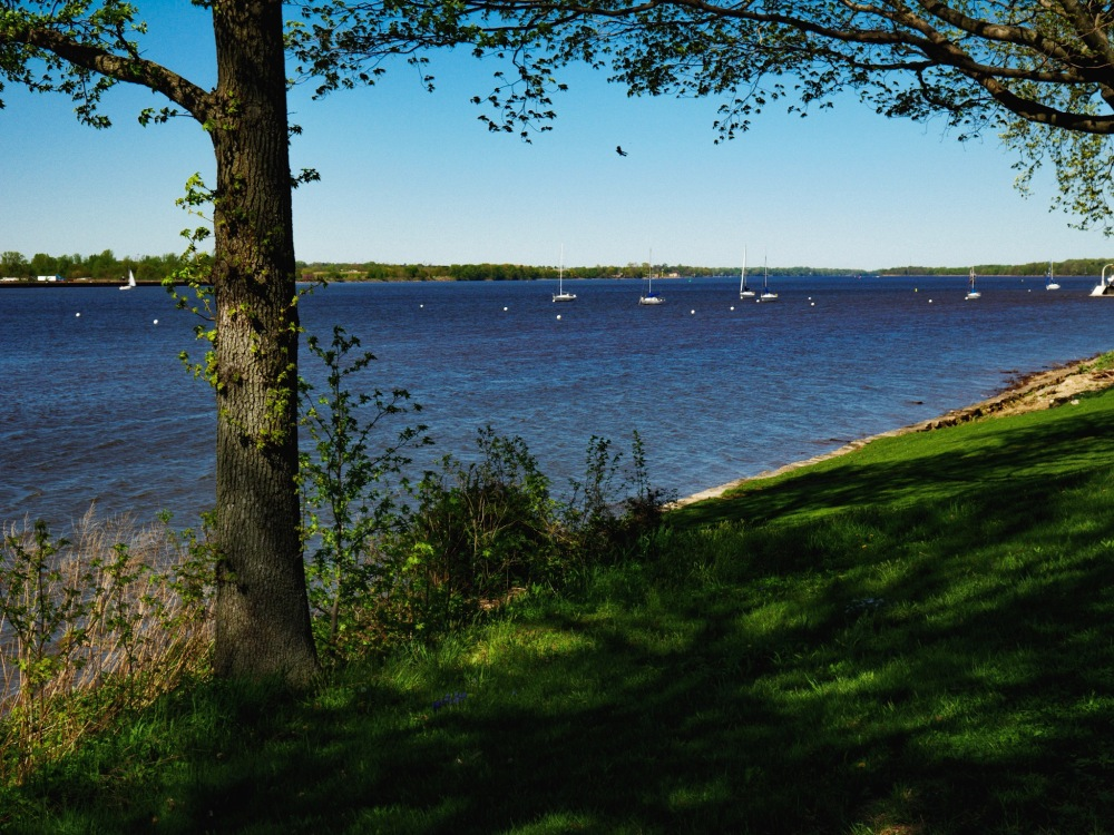 Sailboats moored in the Delaware