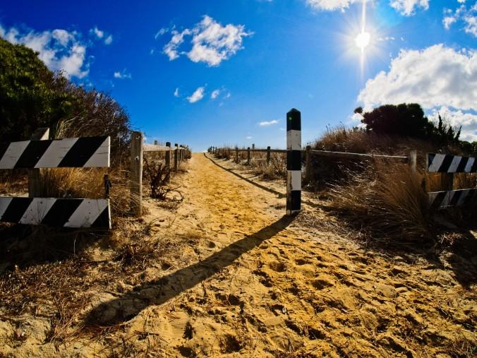 Beach path across the dunes